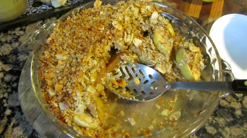 apple and pear crumble4